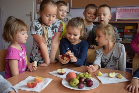 Zabawy badawcze z owocami